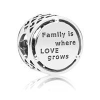 Pandora Family Roots bedel van sterling zilver 797590