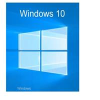 Microsoft Windows 10 Pro UK, 64b,OEI,DVD