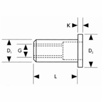 Gesipa Standaard blindklinkmoer Vlakrondkop Staal verzinkt M6x9x15,5mm