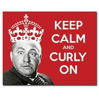Fiftiesstore Keep Calm And Curly On Metalen Poster
