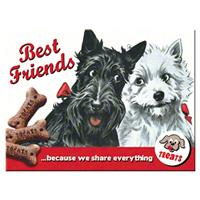 Fiftiesstore Best Friends Because We Share Everything Magneet