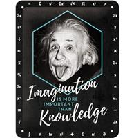fiftiesstore Einstein Imagination Is More Important Than Knowledge Metalen Bord - 15 x 20 cm