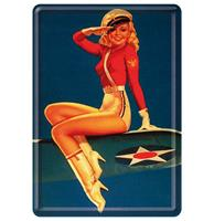 Fiftiesstore Metalen Postkaart Airforce Pin Up