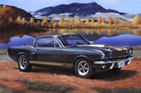 Revell 1/24 Shelby Mustang GT 350 H