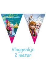 Disney Vlaggenlijn Frozen 2mtr