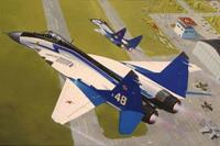 Revell 1/114 Mig-29 The Swifts