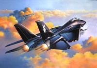 Revell 1/114 F-14a Black Tomcat