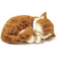 Perfect Petzzz Soft Oranje Tabby