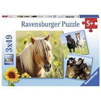Ravensburger Puzzle Liebe Pferde 3 X 49