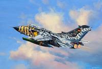 Revell 1/114 Tornado ECR Tigermeet 2011