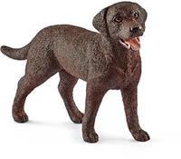 Labrador Retreiver Teefje