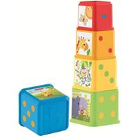 Fisher-Price Stapel & Leer Blokken