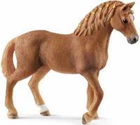 13852 Quarter Horse Merrie