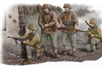 Military Waffen SS Assault Team