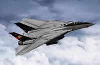 Planes / Helicopter F-14B Tomcat