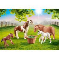 Country 70682 pony's met vleulens