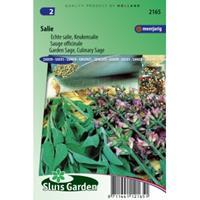 Sluis Garden Salie zaden - Keukensalie