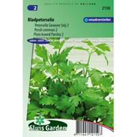 Sluis Garden Bladpeterselie zaden - Gewone Snij 2