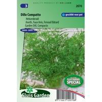 Sluis Garden Dille Compatto zaden