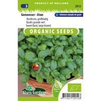 Sluis Garden Basilicum biologische zaden - Genoveser - Aton