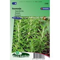 Sluis Garden Rozemarijn zaden - Dauw der Zee