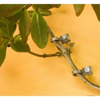 Nature Muurnagel Staal - 10 Stuks