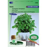 Sluis Garden Stevia zaden - Honingkruid