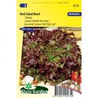 Pluksla zaden - Red Salad Bowl