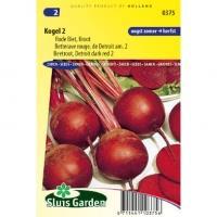 Rode biet (groot) zaden - Kogel 2