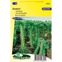 Spruitkool zaden Roodnerf