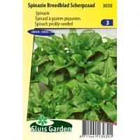 Spinazie (breedblad) zaden