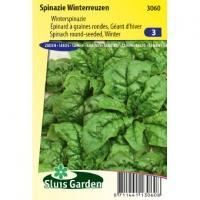 Spinazie (winterspinazie) zaden - Winterreuzen