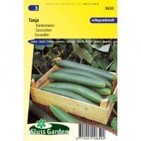 Komkommer zaden Tanja