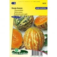 Meloen zaden Oranje Ananas