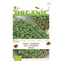Tuinkers Lepidium sativum Gewone - Groentezaden - 10gram