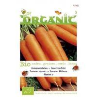 Zomerwortelen Daucus carota Nantes 2 - Groentezaden - 1,5gram