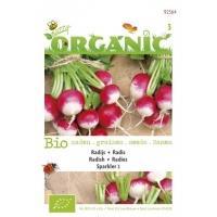 Radijs Raphanus sativus Sparkler - Groentezaden - 2,5gram