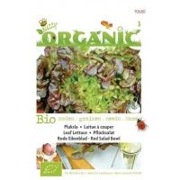 Pluksla Lactuca sativa Red Salad Bowl - Groentezaden - 1g