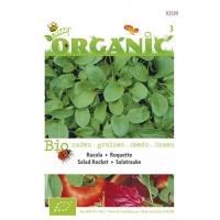 Rucola Eruca sativa gewone - Groentezaden - 3gram