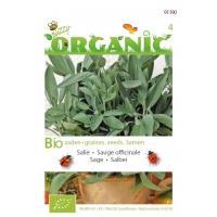 Organic Salie (Skal 14275)