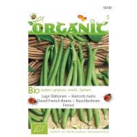 Stamslabonen Ferrari Phaseolus vulgaris L. - Groentezaden - 20gram