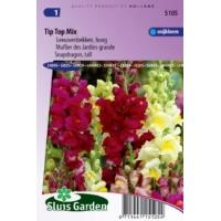 Antirrhinum Majus Maximum zaden Tip Top mix