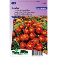 Tagetes Patula zaden Rusty Red afrikaantje