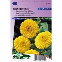 Calendula Officinalis zaden Balls Yellow goudsbloem