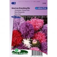 Zomeraster Chinese Aster bloemzaden - Branching Mix