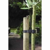 Boomband Zwart 45 x 2.5 cm