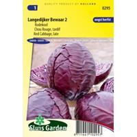 Sluis Garden Rodekool zaden - Langedijker Bewaar 2