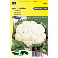 Sluis Garden Bloemkool zaden - Alpha 6 - Fortados