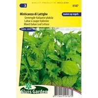 Sluis Garden Pluksla (italiaans gemengd) zaden - Misticanza di Lattghe