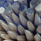Kastanjehouten palen kastanjepalen ø12x200cm